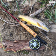 Custom Built Fly Rod
